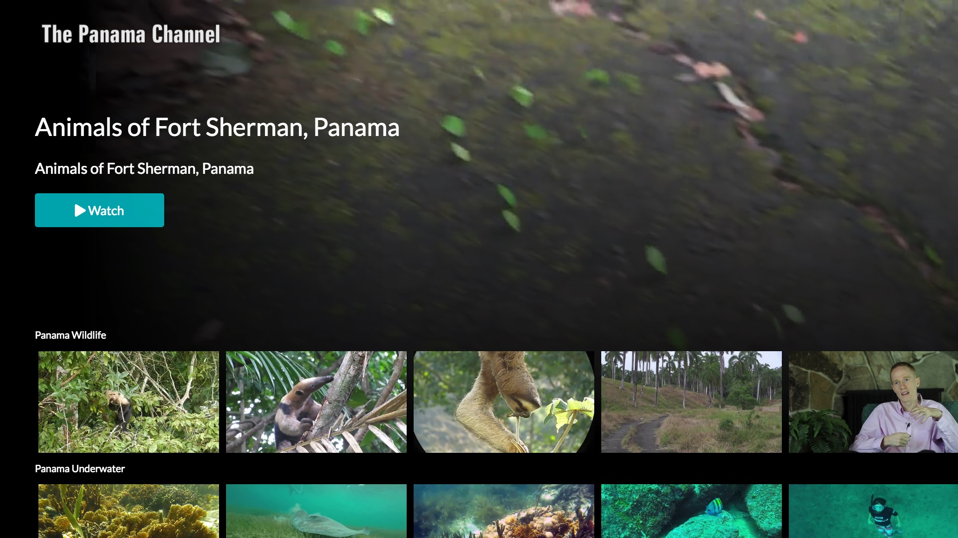 Panama Channel Screenshot 001