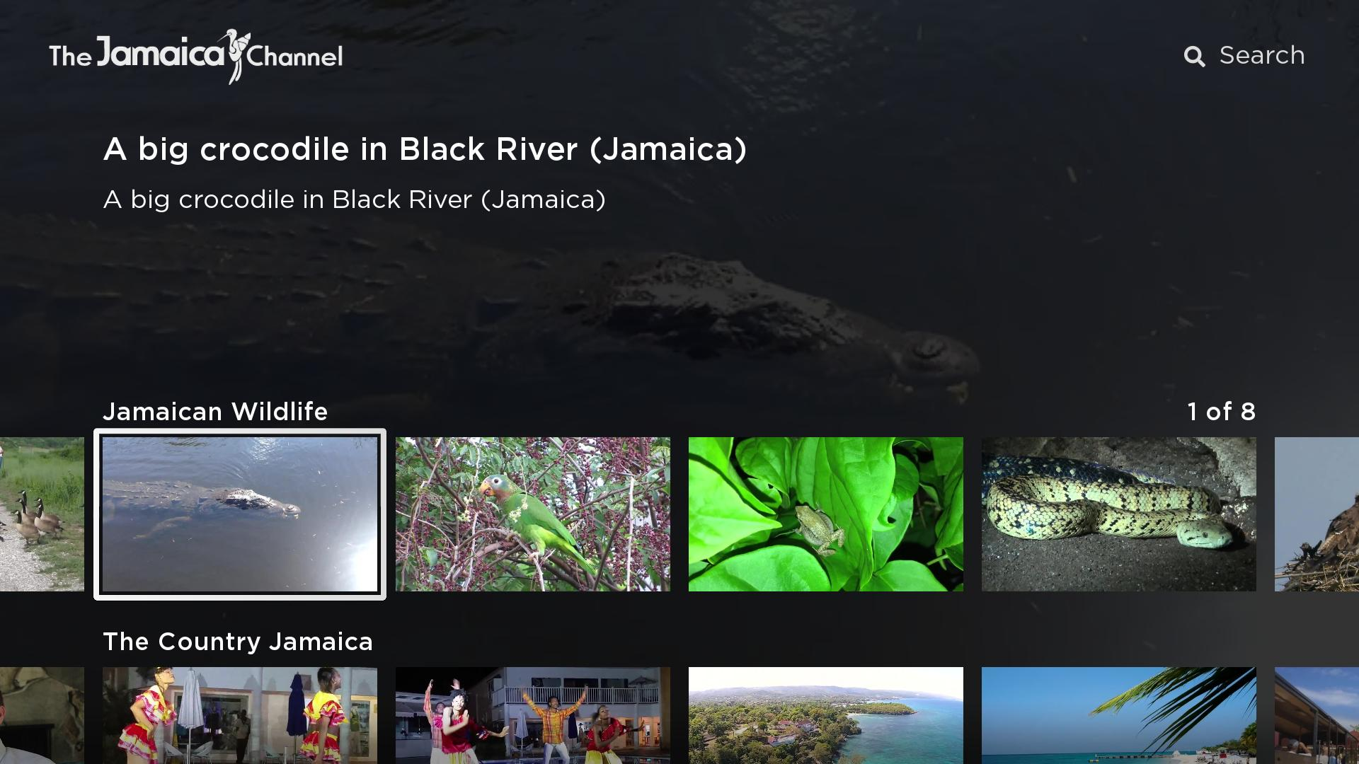 The Jamaica Channel Screenshot 001