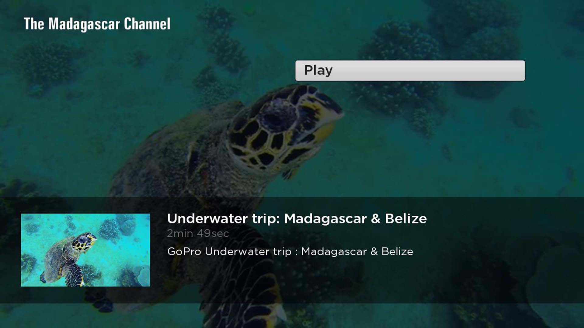 The Madagascar Channel Screenshot 002