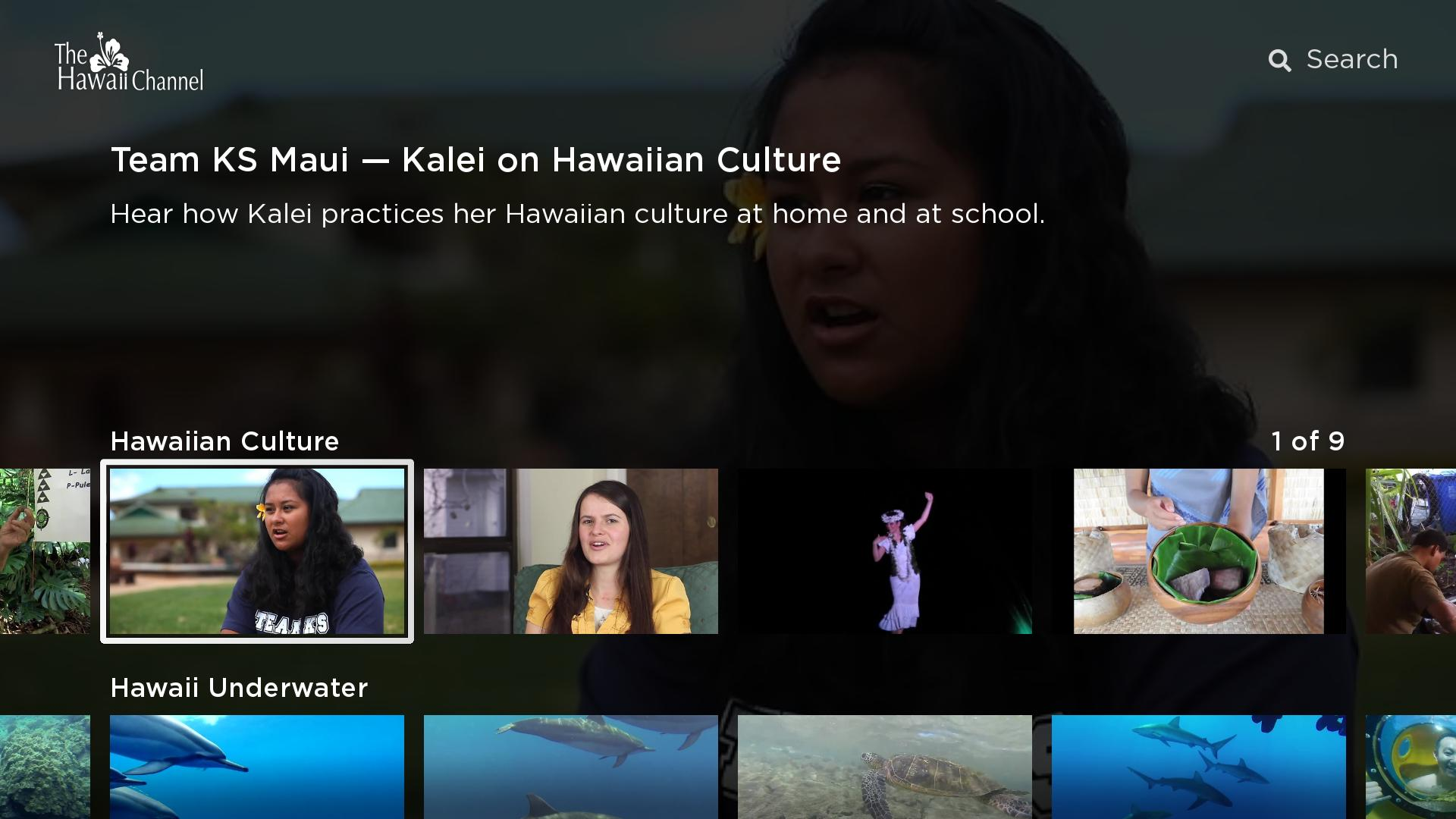 The Hawaii Channel Screenshot 001